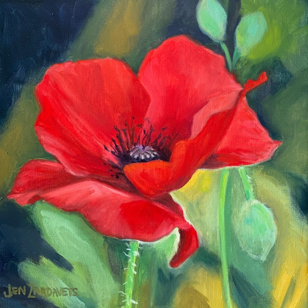 Red Poppy  Art | Jennifer Zardavets Art