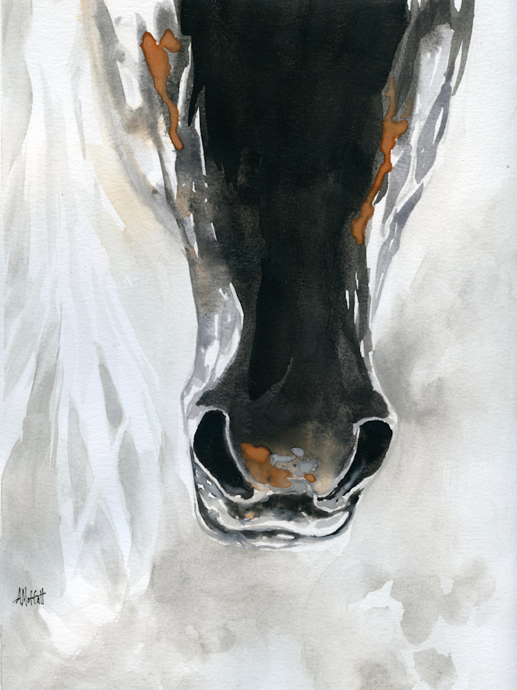Horse Nose Watercolor Painting- Giclee Art Print- by April Moffatt