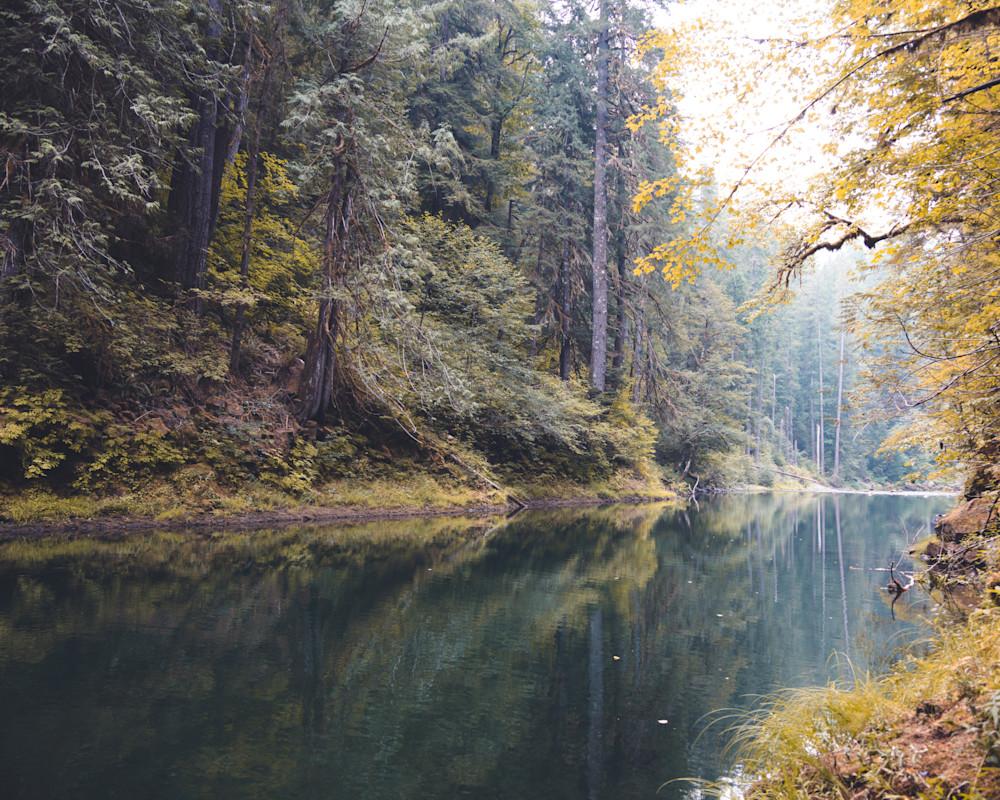 Curly Creek 2021