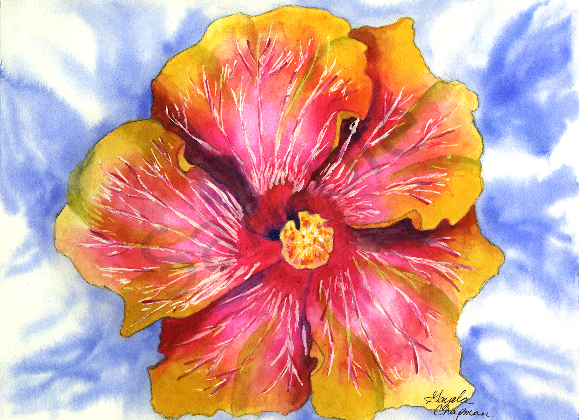Pink Yellow Hibiscus Flower Art By Gayelas Premiere Watercolor
