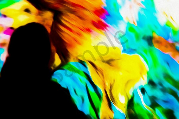 """""""Many Colors"""" by Harold Vincent 