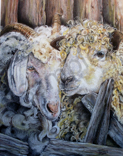 """""""Sheep And Goat"""" by Gina Harding 