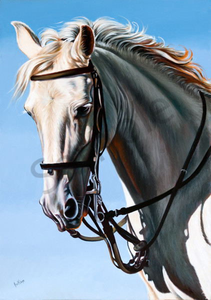 """Running With Horses"" by Ilse Kleyn 