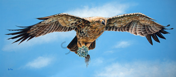 Birds & Insects Art Categories | Prophetics Gallery