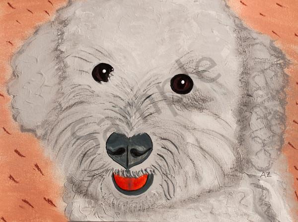 Teddy 1 2