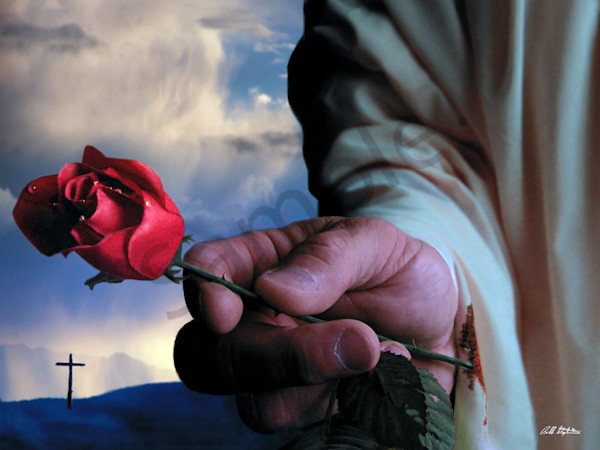 """The Rose"" by Bill Stephens 