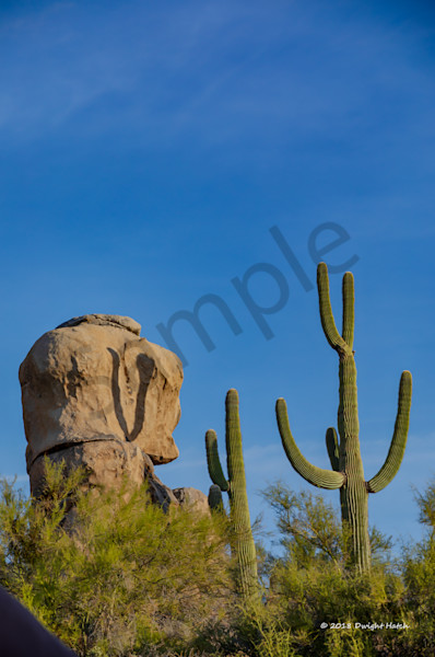 Arizona Landscape 2