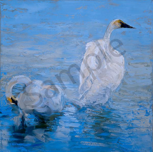Preening Swans Art | Mary Roberson