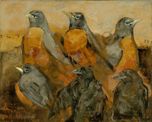 Robins and Fledgling Ravens