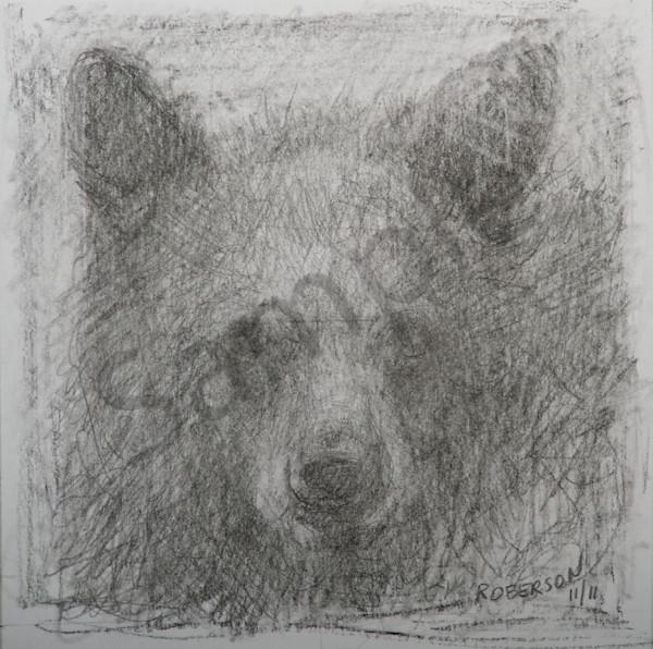 Cub  Sketch Art | Mary Roberson