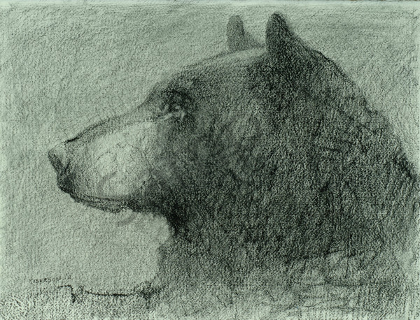 Black Bear Mug Shot Art | Mary Roberson
