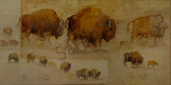 Under Western Skies Art | Mary Roberson
