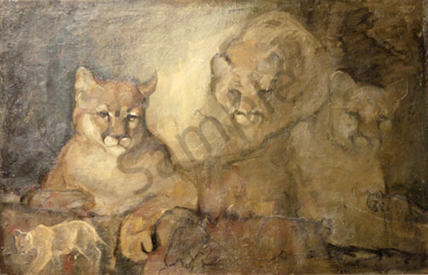 Of Pumas Art | Mary Roberson