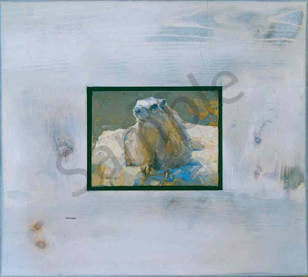 Museum Marmot Jpeg Art   Mary Roberson
