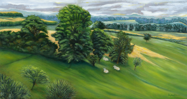 """Emerald Dale   Resting Sheep"" Art | Bonnie Sailer Fine Art"
