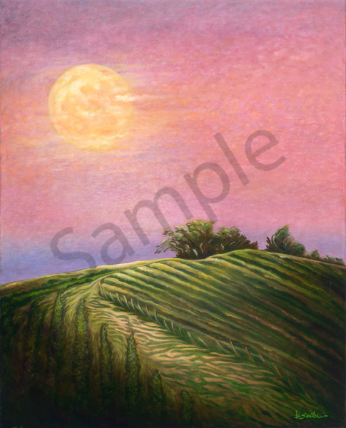 """Moon Bath Over Vines"" Art   Bonnie Sailer Fine Art"