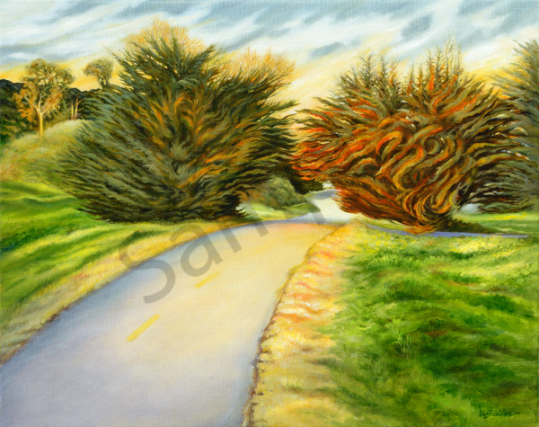 """Barnyard Trail Cypresses"" Art | Bonnie Sailer Fine Art"