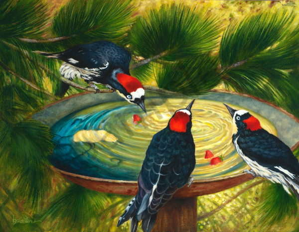 """Woodpeckers And Strawberries"" Art 