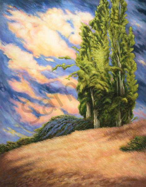 """""""Poplar Hill"""" Art   Bonnie Sailer Fine Art"""
