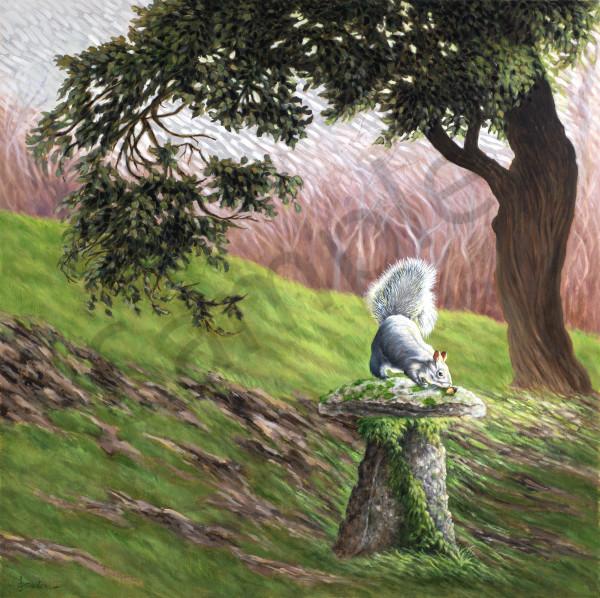 """Squirrel, The Morning Hunt"" Art | Bonnie Sailer Fine Art"