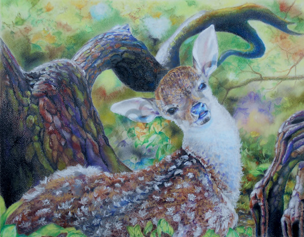 """""""Doe Of The Morning"""" by Gina Harding 