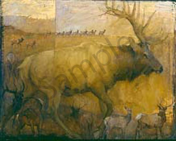 Migratiop