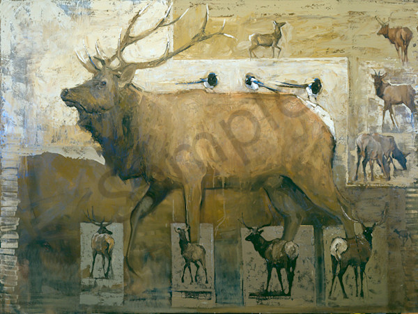 Magpies With Bull Elk Art | Mary Roberson