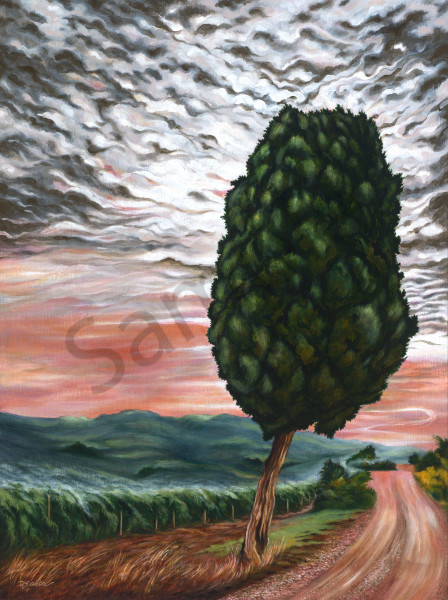 """Cypress Tree on the Road to Tuscany"""