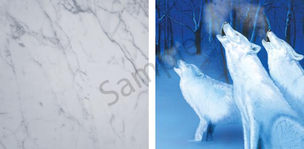 Snow Wolves