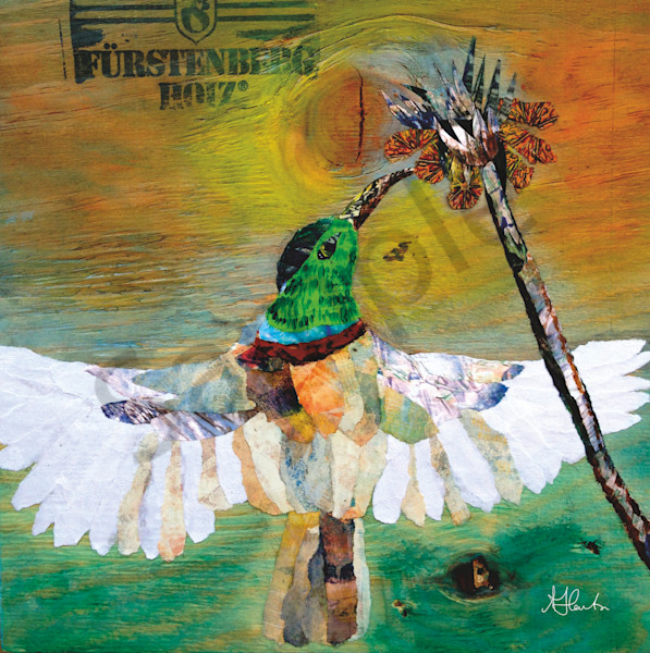 """Lifefinder"" by Jill Lawton 