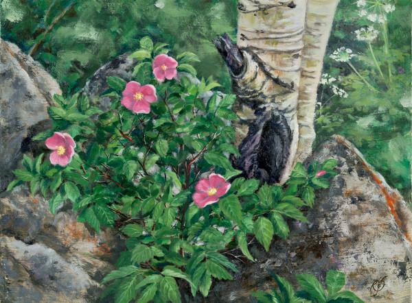 """Colorado Up Close"" Painting by Roxana Sinex, Shop Prints"