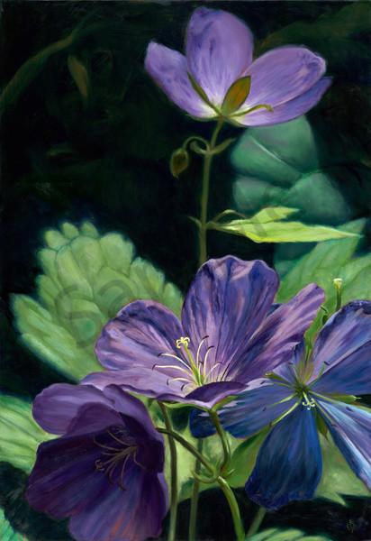 Purple Wildflower Close Up: Shop Painting & Prints