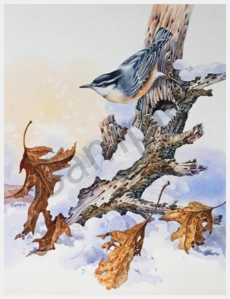 """Nuthatch"" by Colorado Artist Jean Pierre DeBernay 