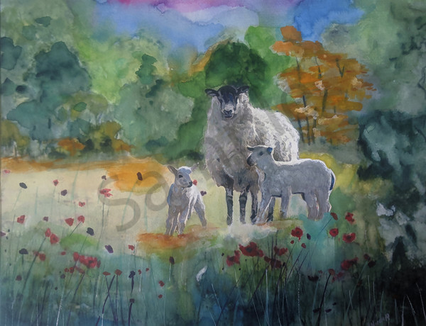 """Sheep In The Meadow"" by New Mexico Penny Winn 