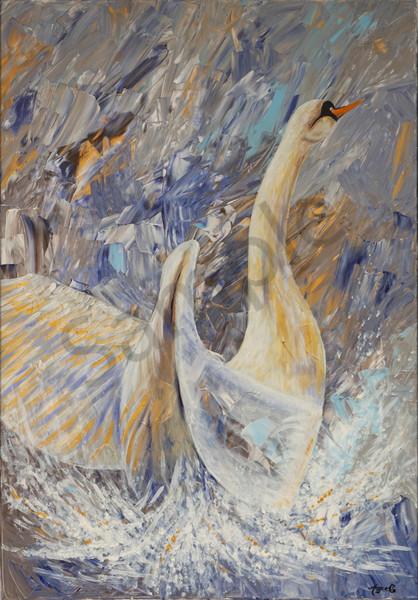 """Swan"" by German Prophetic Artist Angela Günther | Prophetics Gallery"
