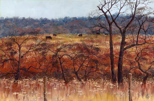 Dusk At Sky Meadows Art | Roxana Sinex Art