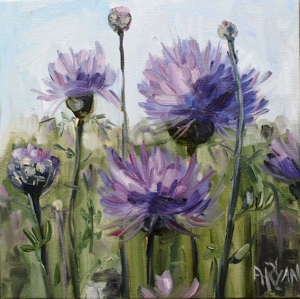 """Thistle Field"" by Pennsylvania Artist April Ryan 