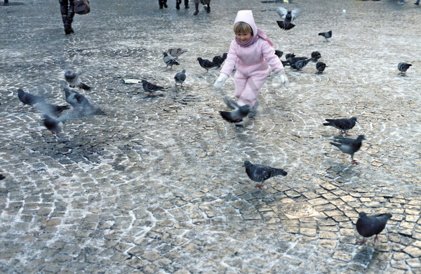 St. Mark's Square, children, pigeons