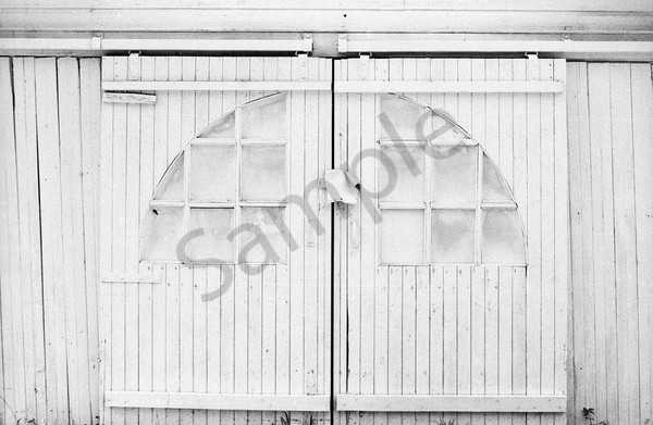 White Garage Doors Art | Wild Ponies creations