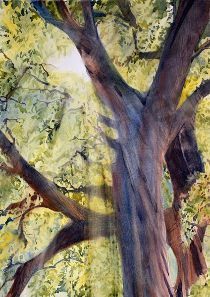 """The Planting"" by Texas Artist Sara Joseph | Prophetics Gallery"