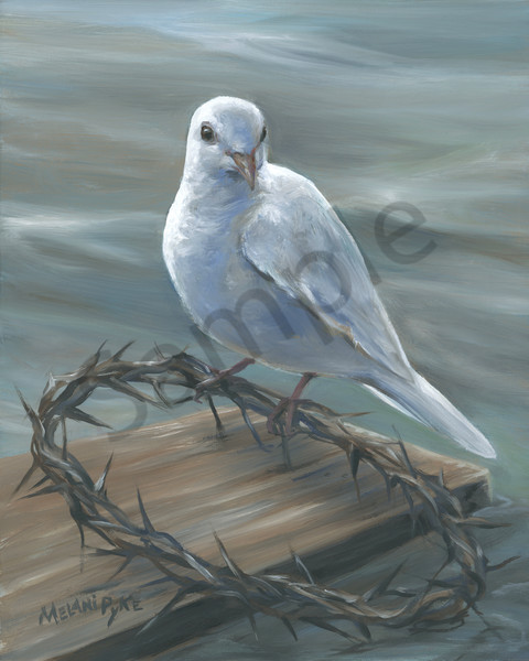 """White Dove Resting on Crown of Thorns"" by Canadian Artist Melani Pyke"