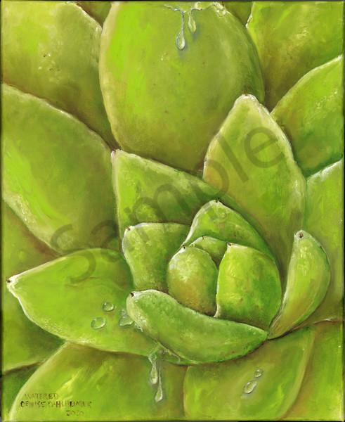 """Watered"" by Minnesota Artist Denise Dahlheimer | Prophetics Gallery"
