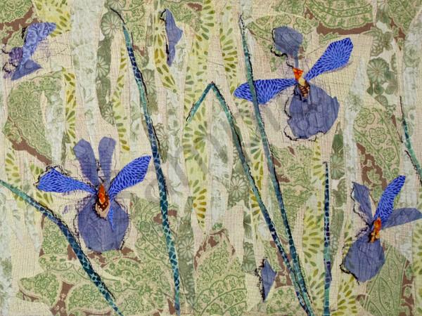 Iris (Right Half) Print Art | Sharon Tesser LLC