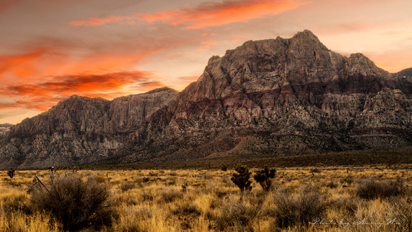 Red Rock Canyon Art | BlackRock Medium LLC.