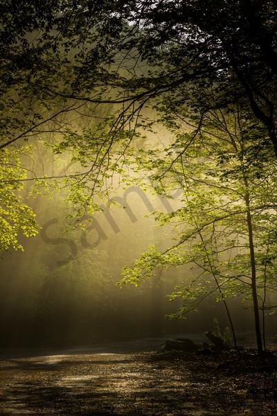 Hazy Light Art | The Volco Gallery