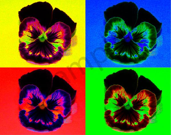 Four Flowers4 Photography Art | CLAUDIA LARRAIN