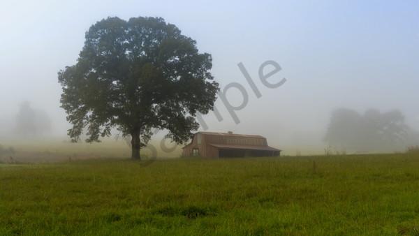"""Mist"" by Texas Photographer Harold Vincent | Prophetics Gallery"