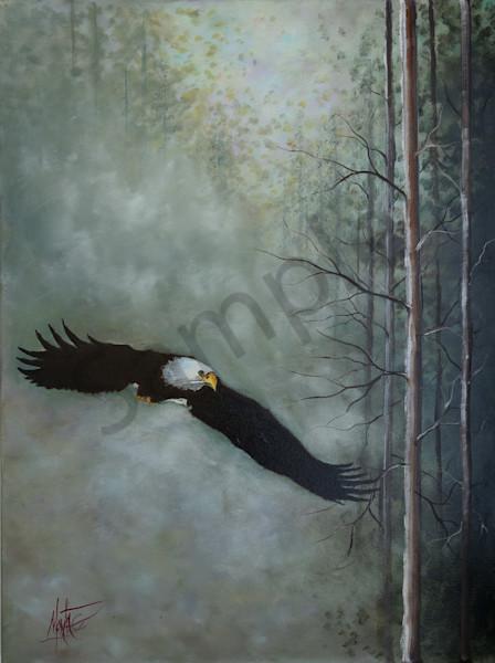 Nebraska Prophetic Artist Jeff Montag | Prophetics Gallery