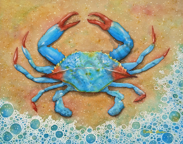 Blue Crab watercolor print available in paper, metal, canvas, acrylic and wood by Beth Owen.