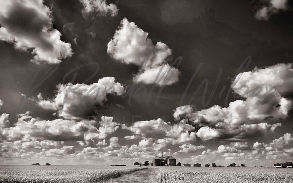 Iowa Farm Art | K. Randall Wilcox Fine Art